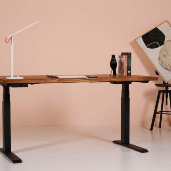 spacecase-sit-stand-desk-high-life-3